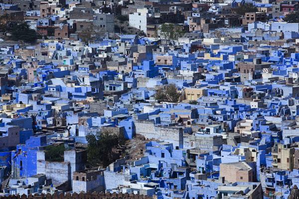 inde-jodhpur-maisons-bleues[1]