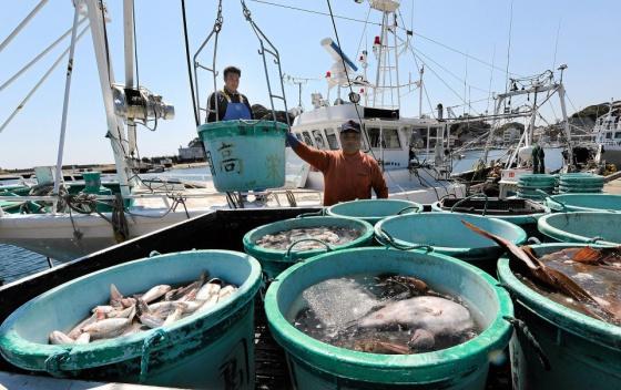 pêcheurs à Fukushima