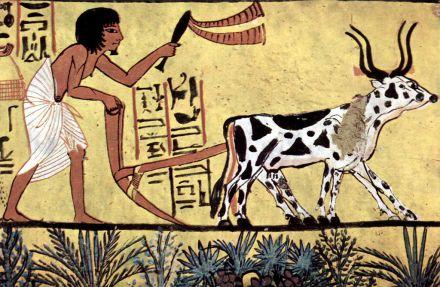 pharaons 2